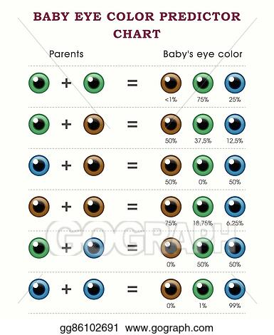 Clip Art Vector Baby Eye Color Predictor Chart Stock Eps