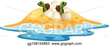 Vector Art Baby Turtle Hatchlings Egg Clipart Drawing Gg108154863 Gograph