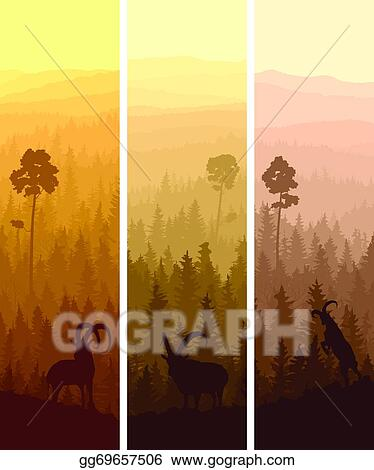 vector clipart banners of hills coniferous wood vector