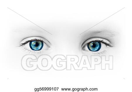 Stock Photography Beautiful Blue Eyes Stock Photo Gg56999107 Gograph
