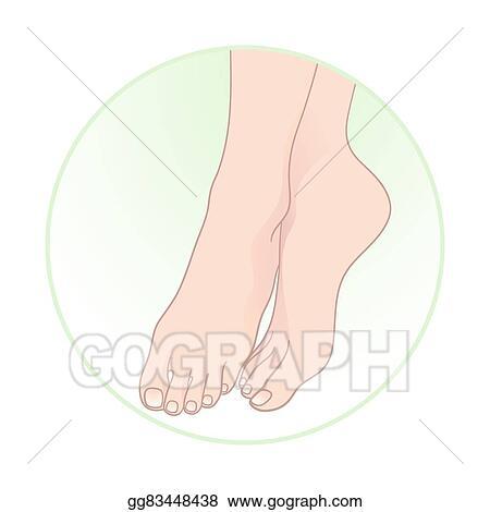 vector stock beautiful female feet vector stock clip art gg83448438 gograph vector stock beautiful female feet