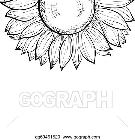 Beautiful Monochrome Black And White Background With A Floral Border Of Sunflower