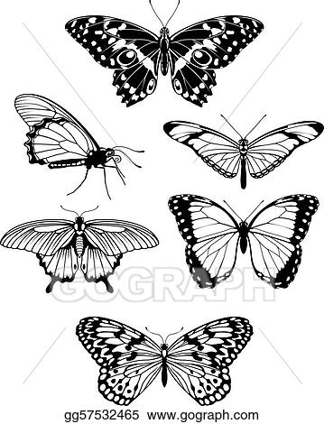 Butterfly outline beautiful. Vector art stylised silhouettes