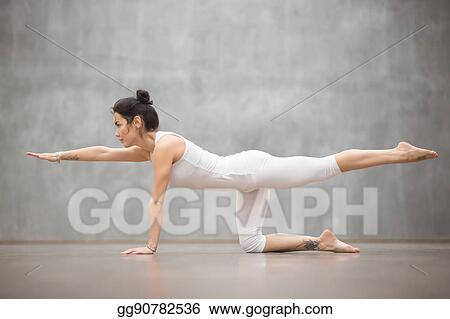 Pictures Beautiful Yogi Woman Doing Bird Dog Pose Stock Photo Gg90782536 Gograph