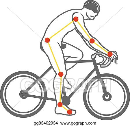 Vector Illustration - Bicycle ride,how to,anatomy. Stock Clip Art ...