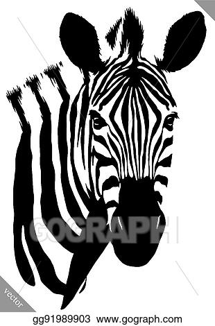 Vector Clipart Black And White Linear Paint Draw Zebra Vector