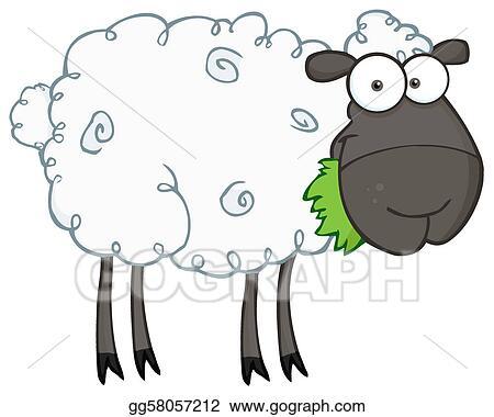 Black Barnyard Sheep Eating Grass