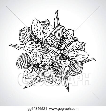 Vector Art - Black macro orchid flower isolated. EPS ...