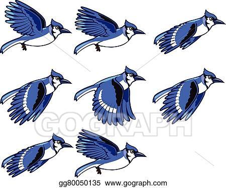 blue jay clip art royalty free gograph rh gograph com baby blue jay clipart baby blue jay clipart