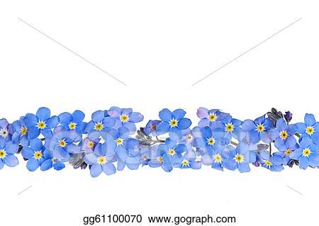Stock photography blue spring flower border stock photo blue spring flower border mightylinksfo