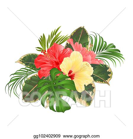 Vector Illustration Bouquet With Tropical Flowers Pink And Yellow