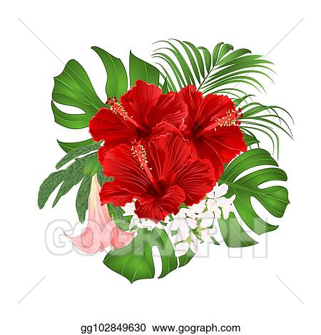 Vector Illustration Bouquet With Tropical Flowers Red Hibiscus