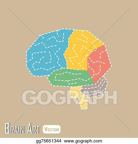 Vector Clipart - Brain anatomy ( frontal lobe , parietal lobe ...