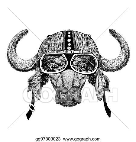 659247ec9 Buffalo, bull, ox Motorcycle, biker, aviator, fly club Illustration for  tattoo, t-shirt, emblem, badge, logo, patch