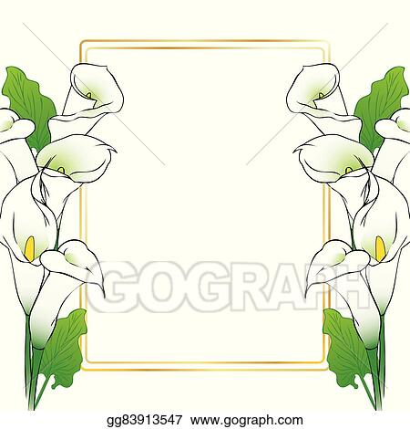 Vector Clipart Calla Lily Flowers Card Vector Illustration