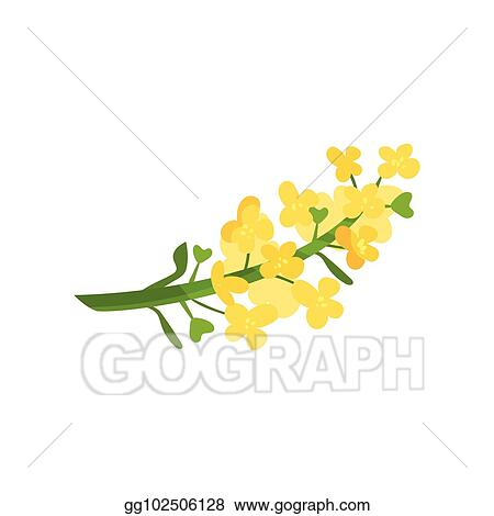 Small Yellow Flowers Clip Art