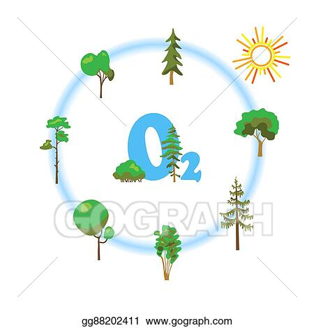 Vector Illustration Cartoon Image Of Photosynthesis Trees Stock Clip Art Gg88202411 Gograph Looking to the right, you can see how the top. cartoon image of photosynthesis trees