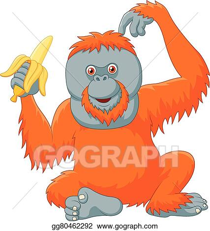 vector clipart cartoon orangutan eating banana vector rh gograph com cute orangutan clipart orangutan clipart
