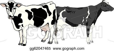 Vector Art Cattle Clipart Drawing Gg62047465 Gograph