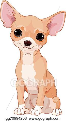 vector art chihuahua clipart drawing gg70994203 gograph