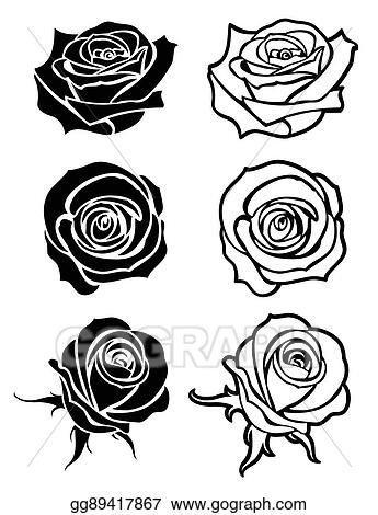 Vector Stock Close Up Rose Vector Tattoo Logos Floral