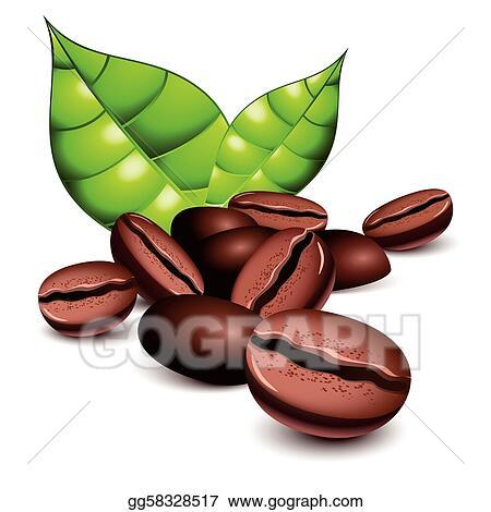 Coffee Bean Clip Art Royalty Free Gograph