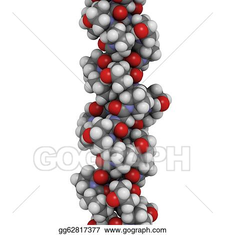 stock illustration collagen model protein chemical structure