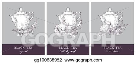 Vector Stock Collection Of Beautiful Labels With Teapot Cup Black Tea Leaves Flowers Bergamot And Lemon Hand Drawn Set Of Tasty Naturally Flavored Drinks Detailed Vector Illustration In Vintage Style Stock