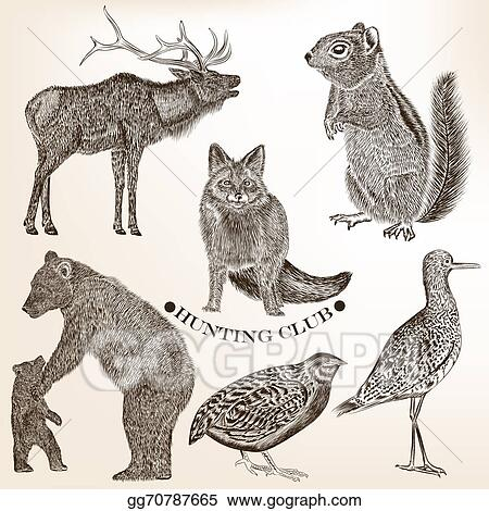 Stock Illustration , Collection of hand drawn vector animals