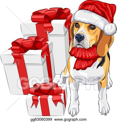 Christmas Beagle Clipart.Vector Stock Color Sketch Of The Dog Beagle Breed In The