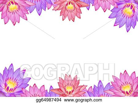 Drawing colorful lotus flowers clipart drawing gg64987494 gograph colorful lotus flowers mightylinksfo