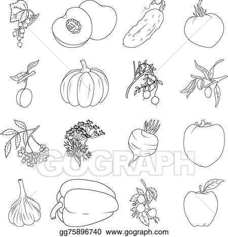 Vector Stock - Coloring Book. Set Of Fruits And Vegetables. Clipart  Illustration Gg75896740 - GoGraph