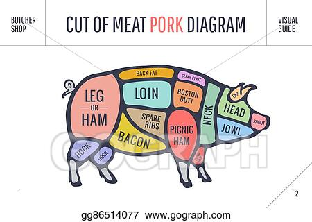 Vector Stock Cut Of Meat Set Poster Butcher Diagram Scheme And