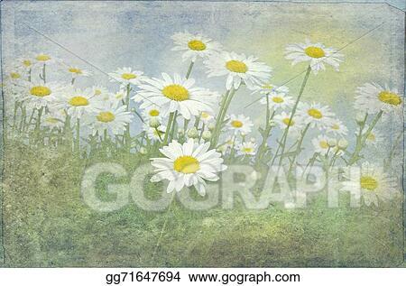 Field of Daisies Clip Art