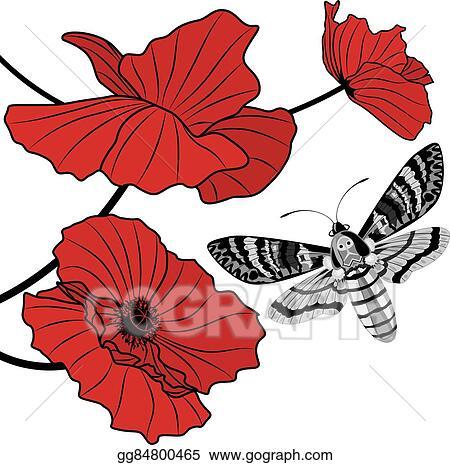 Clip art vector deaths head hawk moth and red poppy stock eps deaths head hawk moth and red poppy mightylinksfo