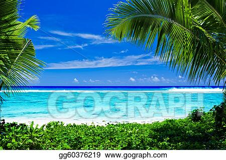 Stock Image - Deserted tropical beach framed by palm trees. Stock ...