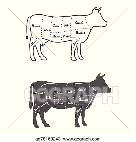 detailed illustration diagram scheme or chart american cut of beef_gg78169243 vector illustration detailed illustration, diagram, scheme or