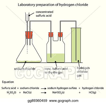 Vector Stock Diagram Of Preparation Of Hydrogen Chloride Gas