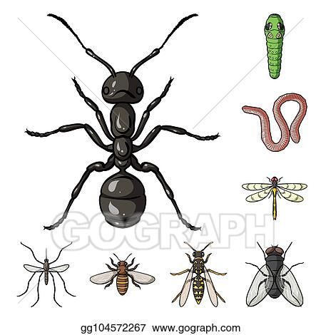 a18b8c6b8a53a Different kinds of insects cartoon icons in set collection for design.  Insect arthropod bitmap symbol stock web illustration.