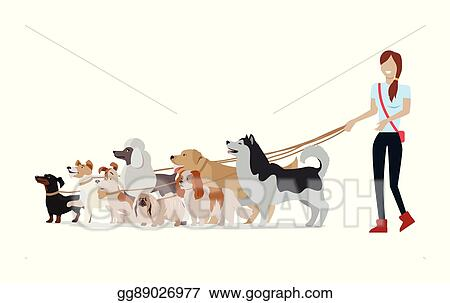 Vector Stock Dog Walking Banner Woman Walk With Different Dogs Stock Clip Art Gg89026977 Gograph
