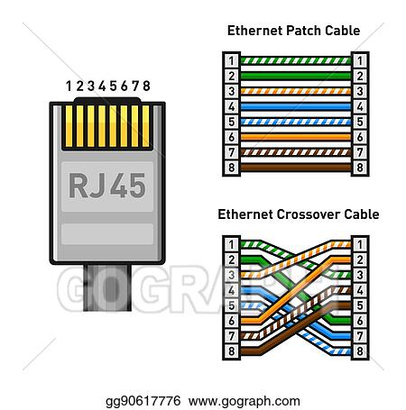 ethernet connector pinout color code  straight and crossover rj45 connect   vector