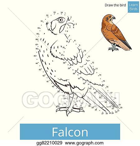 Vector Illustration Falcon Bird Learn Birds Coloring Book Vector Eps Clipart Gg82210029 Gograph