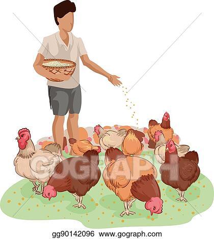 EPS Vector - Farm boy chicken feed  Stock Clipart