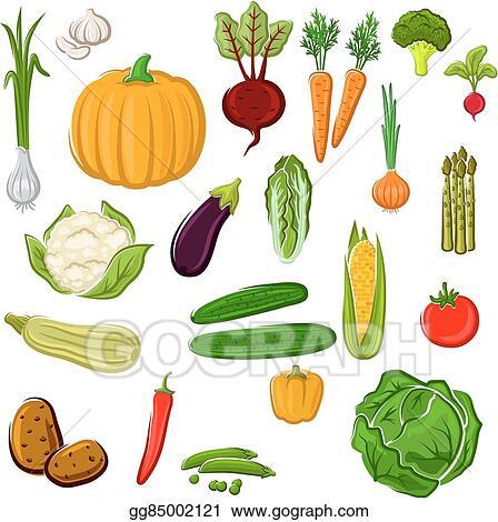 vector art farm vegetables for agriculture design clipart drawing rh gograph com Sleep Clip Art Protein Clip Art