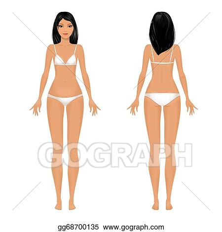 Vector Art Female Body Template Front And Back Clipart Drawing Gg68700135 Gograph
