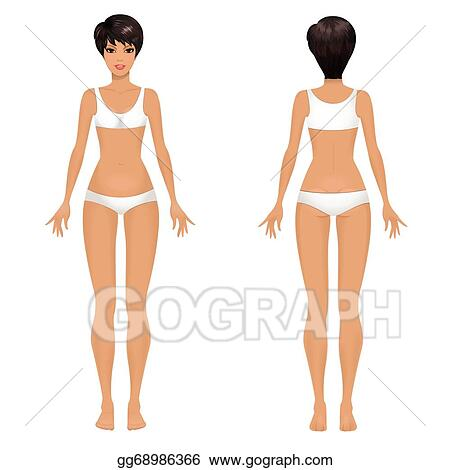 Vector Art Female Body Template Front And Back Clipart Drawing Gg68986366 Gograph