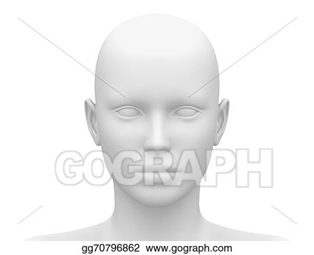 Stock Illustration Female Head Muscles Anatomy Front Clipart