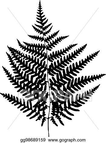 vector art fern leaf silhouette vector illustration clipart rh gograph com fern clipart stencil fern images clip art