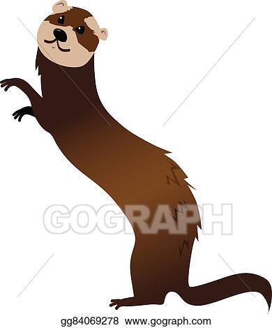 eps illustration ferret vector clipart gg84069278 gograph rh gograph com White Ferret Clip Art Ferret Icon
