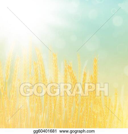 wheat field Clipart | +1,566,198 clip arts